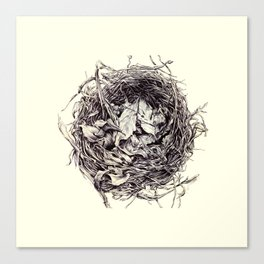 Birds Nest Canvas Print