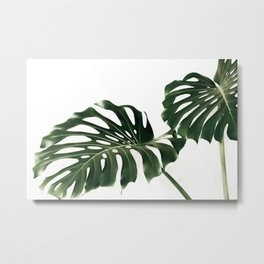 Minimalist Monstera Metal Print