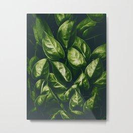Greenery Pattern (Color) Metal Print