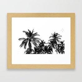 Palm Trees Los Cabos Framed Art Print