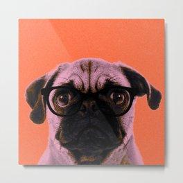 Geek Pug in Orange Background Metal Print