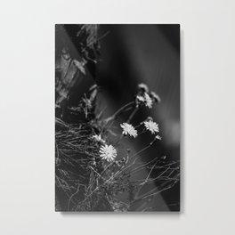 Night Song Metal Print