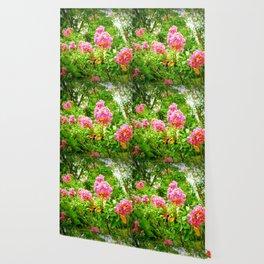 Pink Flowers Green Leaves Wallpaper