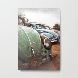 Old Bugs Metal Print