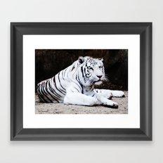 Wild Beauty Framed Art Print