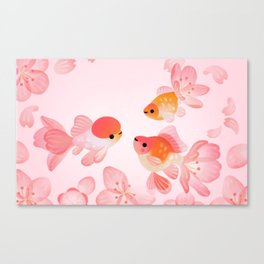 Cherry blossom goldfish Canvas Print
