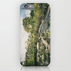 Sweet Summer iPhone 6s Slim Case