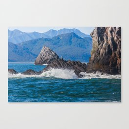 Pacific ocean bay Canvas Print