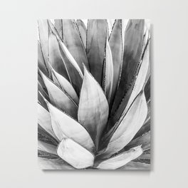Cactus Leaves // Black and White Home Decor Vibes Desert Hombre Plant Photograph Metal Print