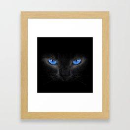 Black Cat in Blue Eyes Framed Art Print