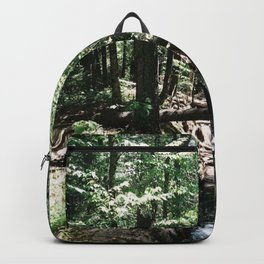 Johannsen III Backpack