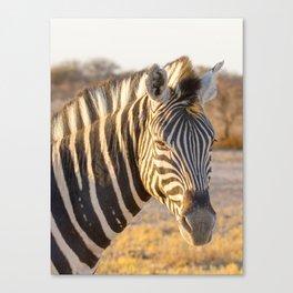 Lone Zebra - Head only, portrait Canvas Print