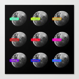 Moon languages of the world Canvas Print