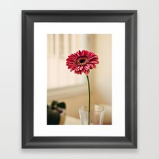 Flower in Window Framed Art Print