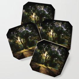 Enigma Coaster