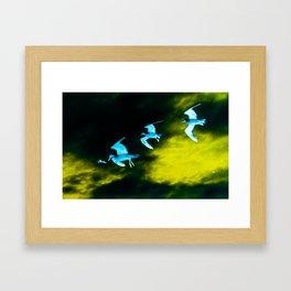 Birds green Framed Art Print