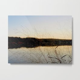Reeds by the River Metal Print