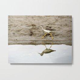 Bird on a Mission Metal Print