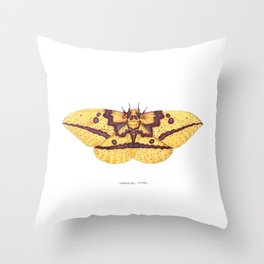 Imperial Moth (Eacles imperialis) Throw Pillow