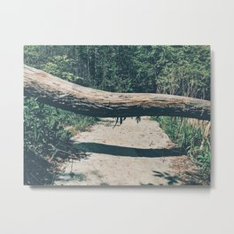 In your path Metal Print