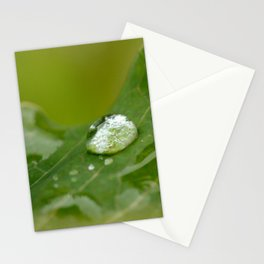 Life-givers Stationery Cards
