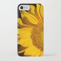 sunflower iPhone & iPod Cases featuring sunflower by mark ashkenazi