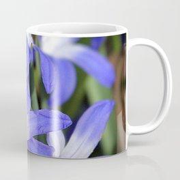 Early Spring Blue - Chionodoxa Coffee Mug