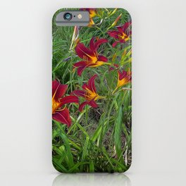 Tiger Lily Garden iPhone Case