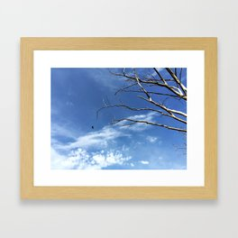 Bird as Prophet Framed Art Print