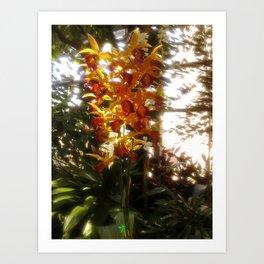 Dreamy Flower Art Print