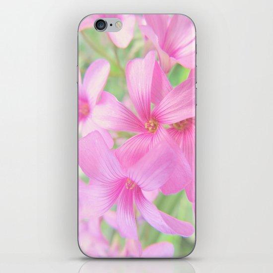 Coral Pink Petals iPhone & iPod Skin