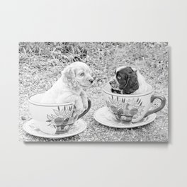 Teacup Puppies. Metal Print