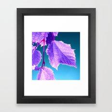 purple wine leaf Framed Art Print