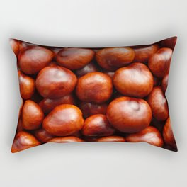 Red conkers Rectangular Pillow