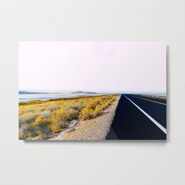 Along the Salt Flats Metal Print