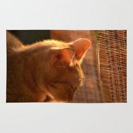 Resting Sunset Rug