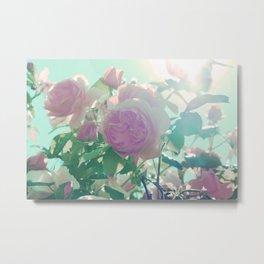 Mystic Rose Light Metal Print