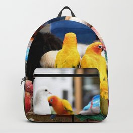 The Great A-meow-ican Melting Pot Backpack