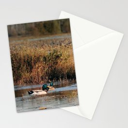 Mallards in the Swamp Stationery Cards