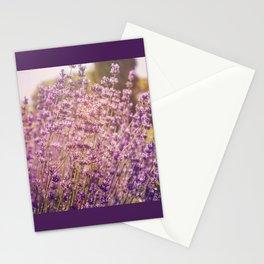 Enchanting Lavender Stationery Cards