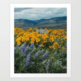 Oregon Spring Wildflower Hillside Art Print