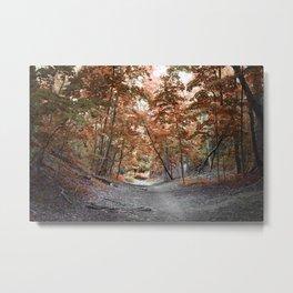 Copper Woods Metal Print