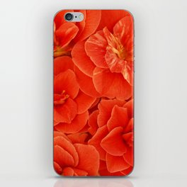 Red Camelias... iPhone Skin