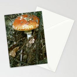 toadstool Stationery Cards