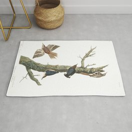 Brown creeper, Birds of America, Audubon Plate 415 Rug