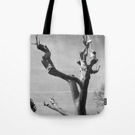 Platane Tote Bag