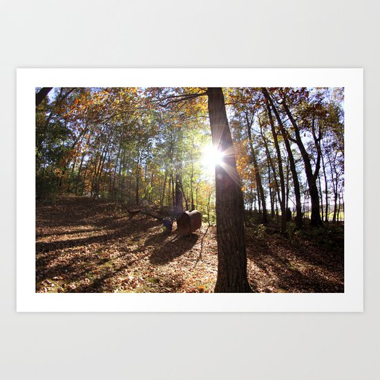 Autumn in the Backyard Art Print