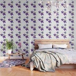 Aquilegia Flower Wallpaper