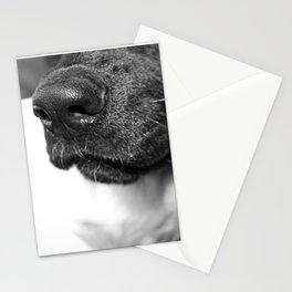 Melody Nosey Stationery Cards