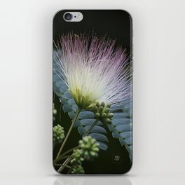 Mimosa Blossoms iPhone Skin